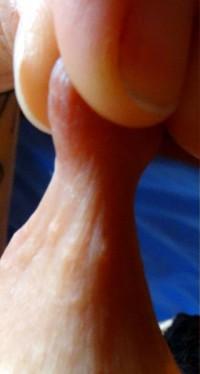 Free porn pics of More Nipple shots 1 of 8 pics