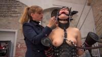 Free porn pics of Pony castration 1 of 4 pics