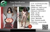 Free porn pics of Carte identification de soumise 1 of 4 pics